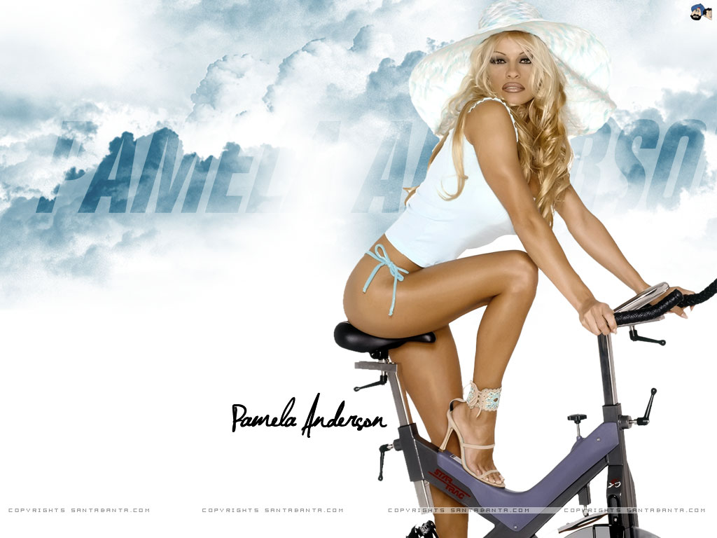 Free Animated 3d Wallpaper Download Pamela Anderson Wallpaper Gallery