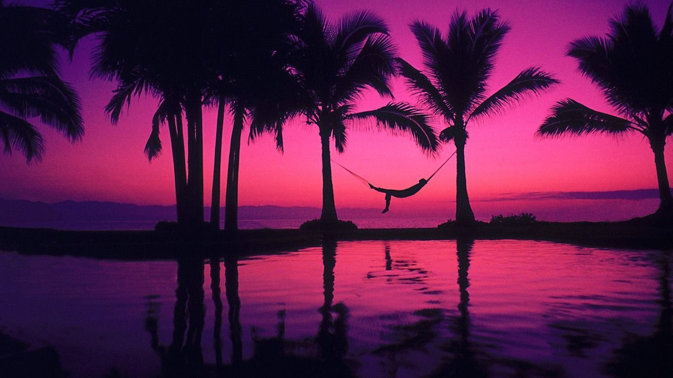 Deep Wallpaper Quotes Download Pink Palm Tree Wallpaper Gallery