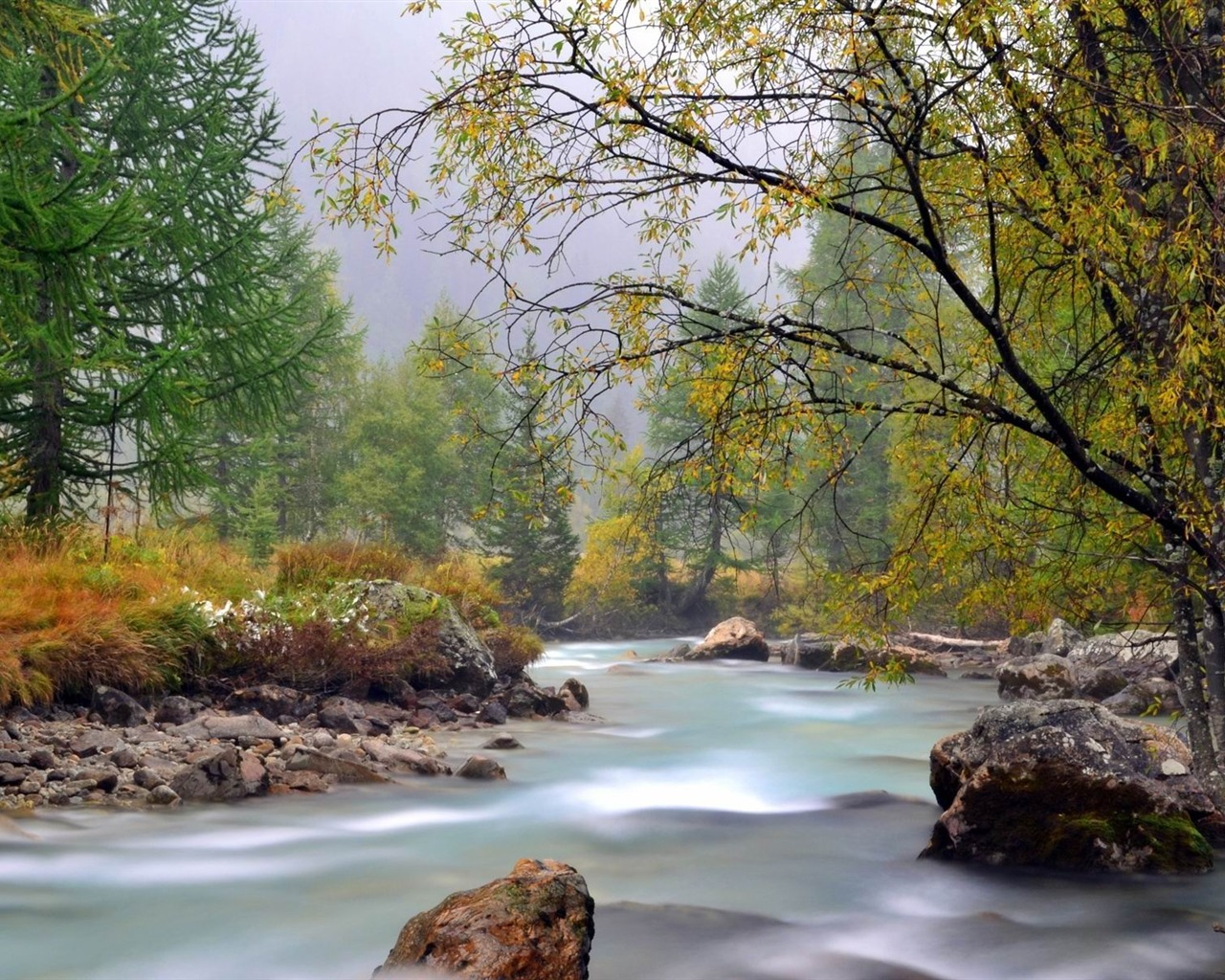 Secret Love Quotes Hd Wallpapers Download River Scenery Wallpaper Gallery