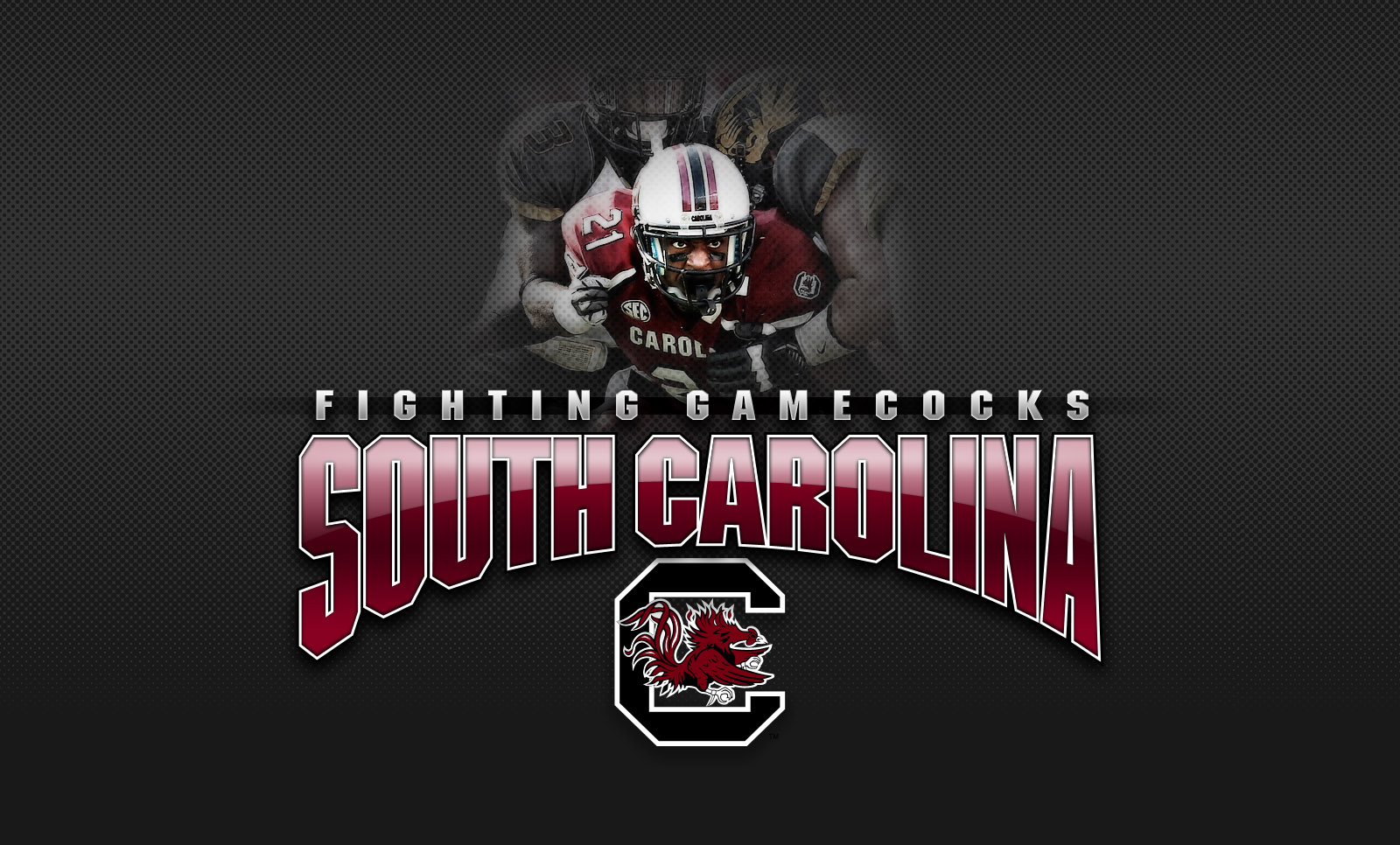 Ghost 3d Wallpaper Download Download South Carolina Football Wallpaper Gallery
