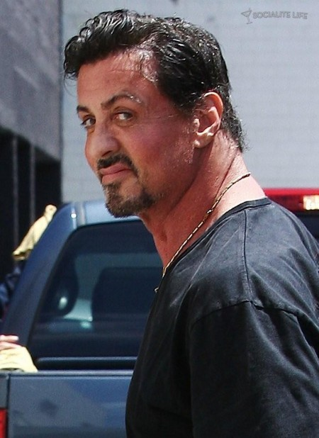 popular kitchen cabinets cabinet feet download sylvester stallone body wallpapers gallery