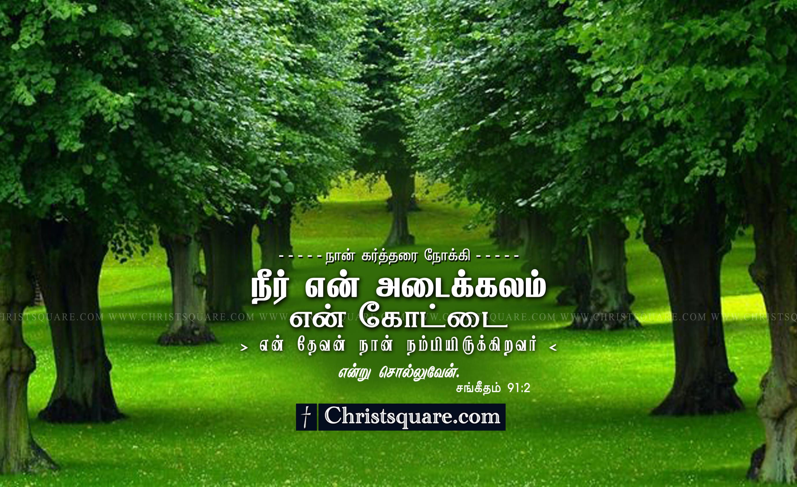 Encouraging Quotes Wallpaper Free Download Download Tamil Bible Words Hd Wallpaper Gallery