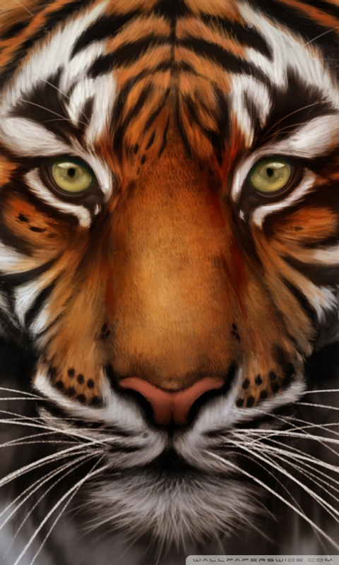 Tiger Live Wallpaper Iphone X Download Tiger Hd Wallpaper For Mobile Gallery