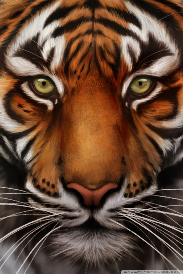 Iphone X Moving Wallpaper Download Tiger Wallpaper Iphone Gallery