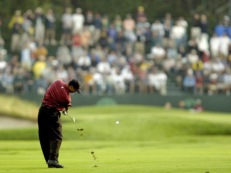 Wallpaper One Piece 3d For Android Download Tiger Woods Wallpaper Gallery