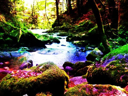 Wallpaper Quotes For Bedroom Download Trippy Nature Wallpaper Gallery