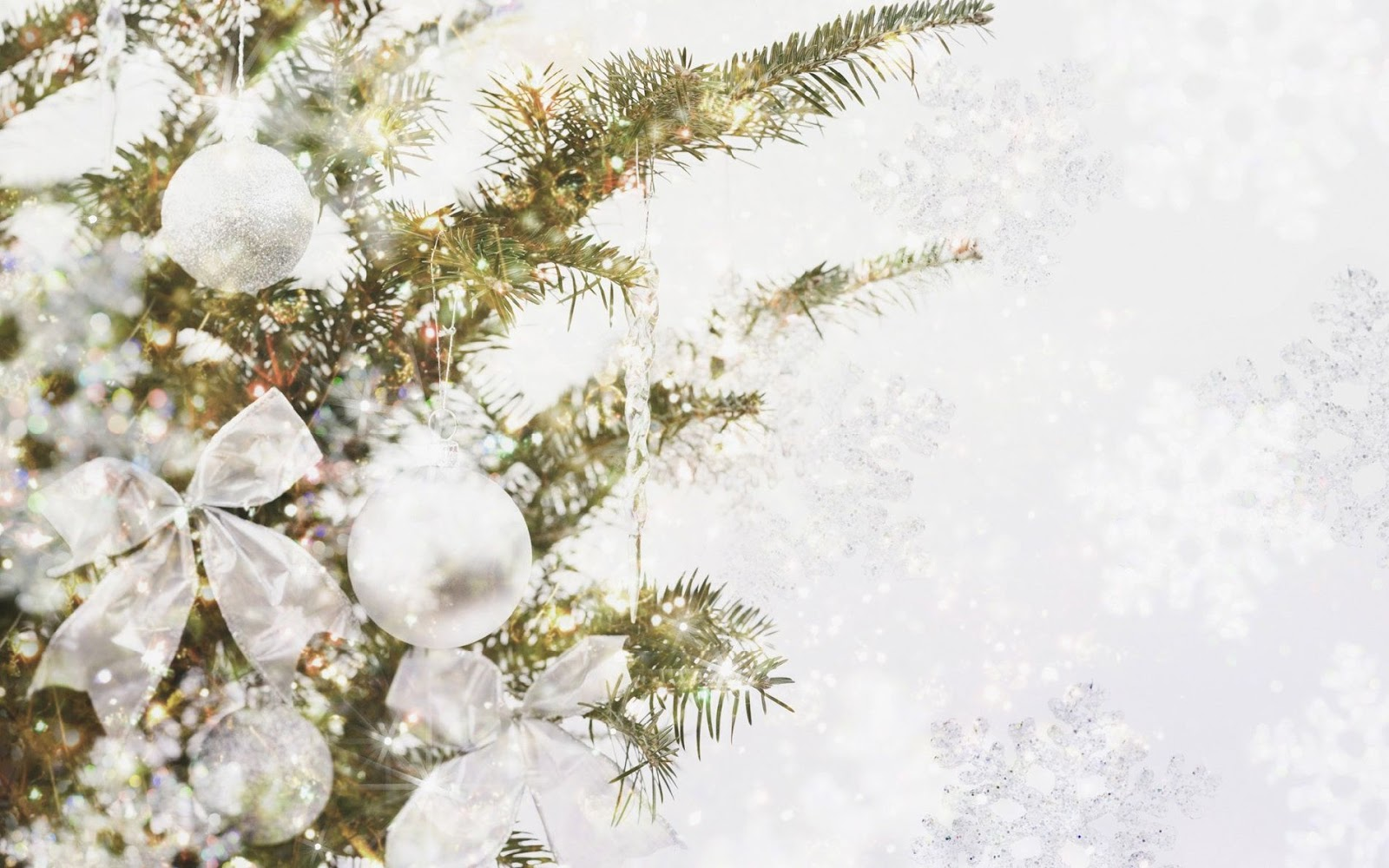 Free Cute Monkey Wallpapers Download White Christmas Wallpaper Gallery