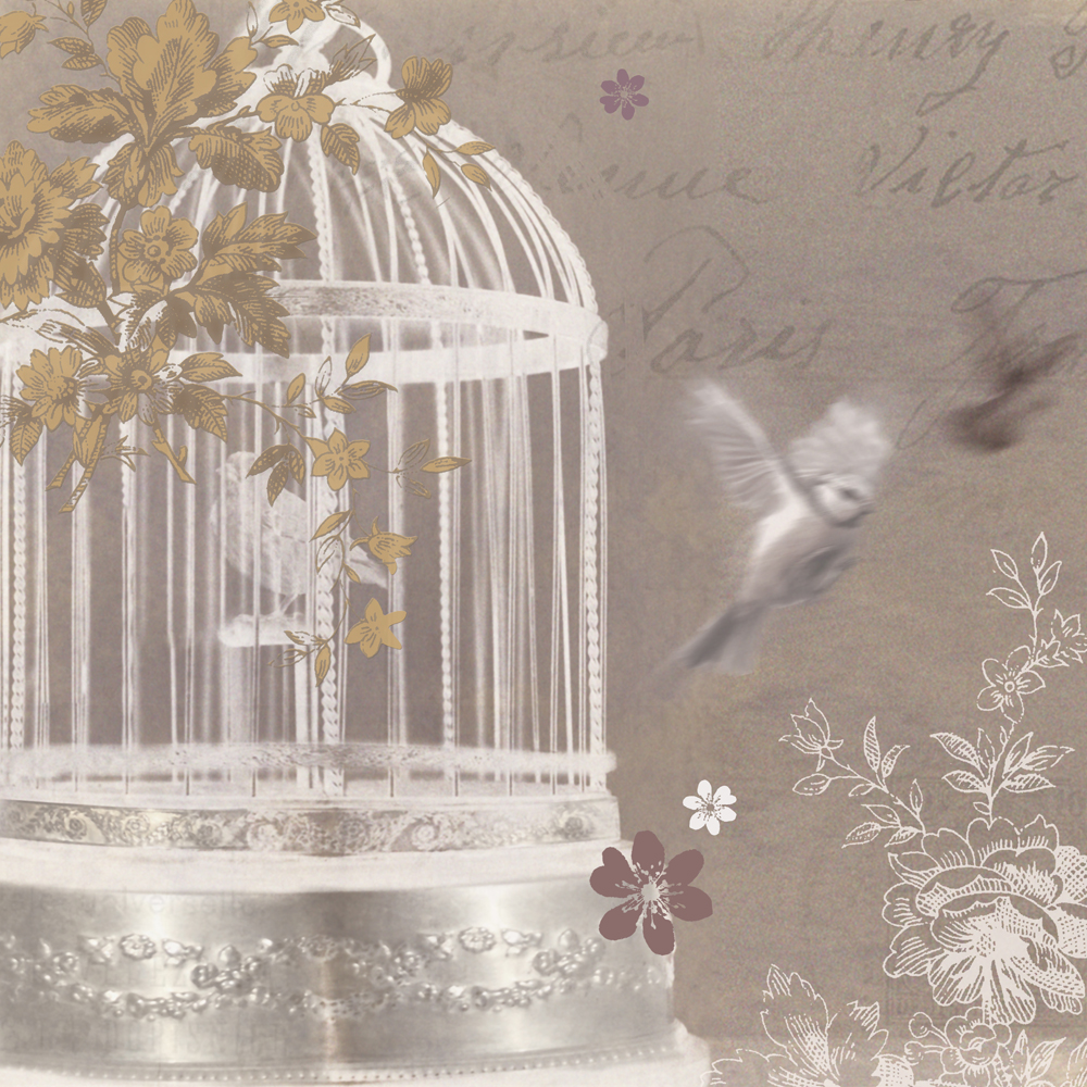 Live Wallpapers For Girls Download Bird Cage Wallpaper Gallery