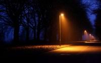 Nature night lights lamps lamp-post trees lightbeams roads ...