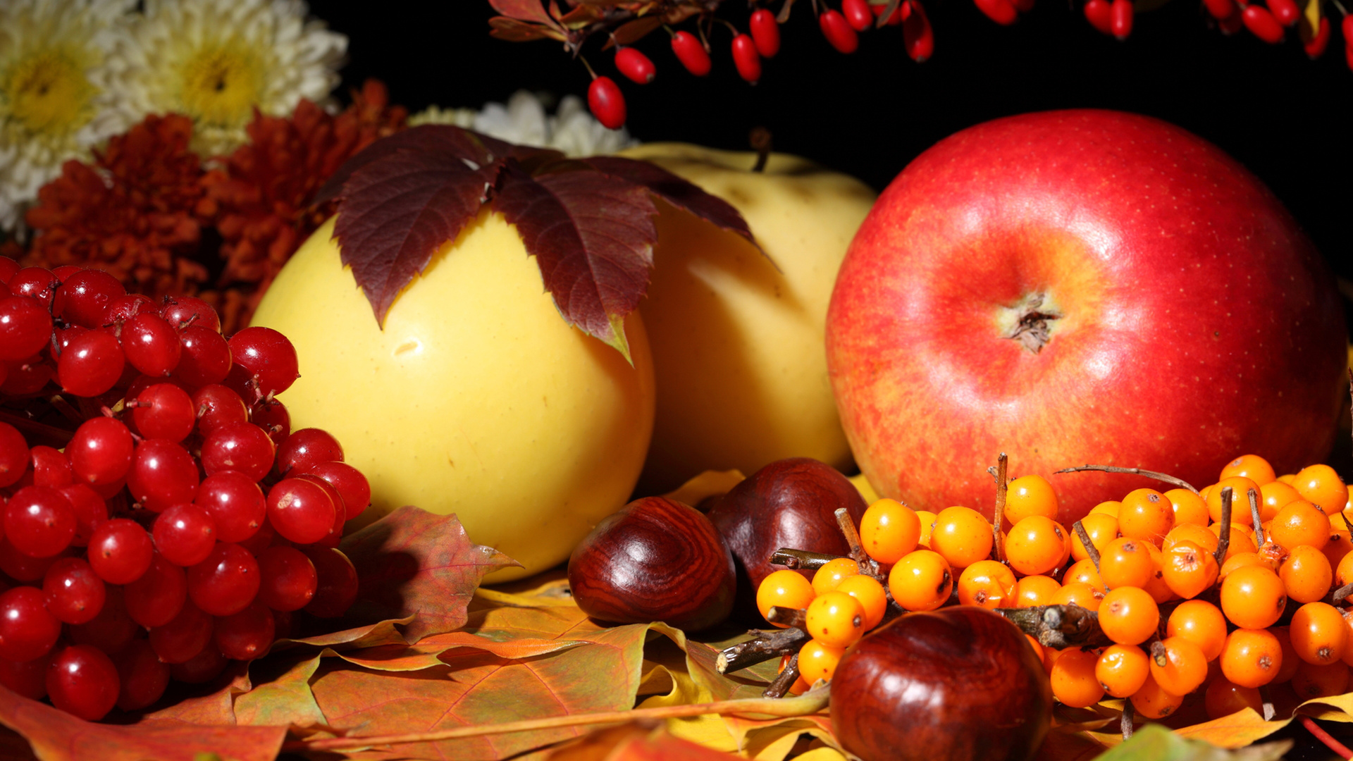 Fall Nature Wallpaper Fruit Still Life Apples Berries Berry Nuts Food Leaves