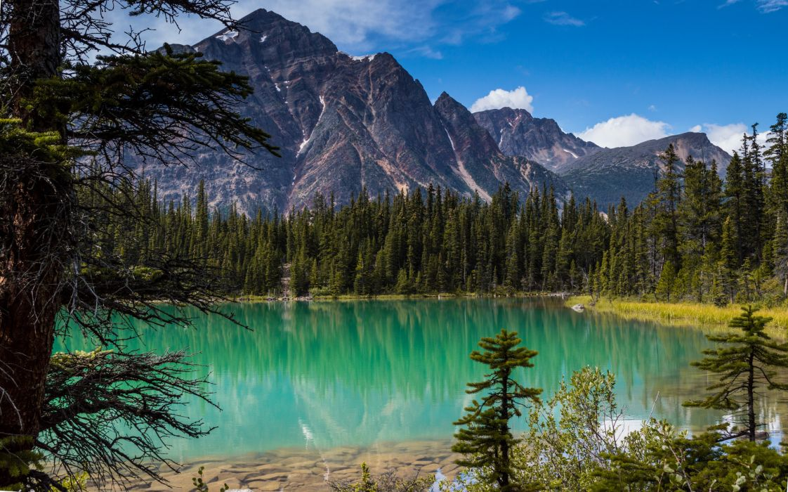 Np Name 3d Wallpaper Forest Trees Mountains Lake Wallpaper 2048x1278 132681