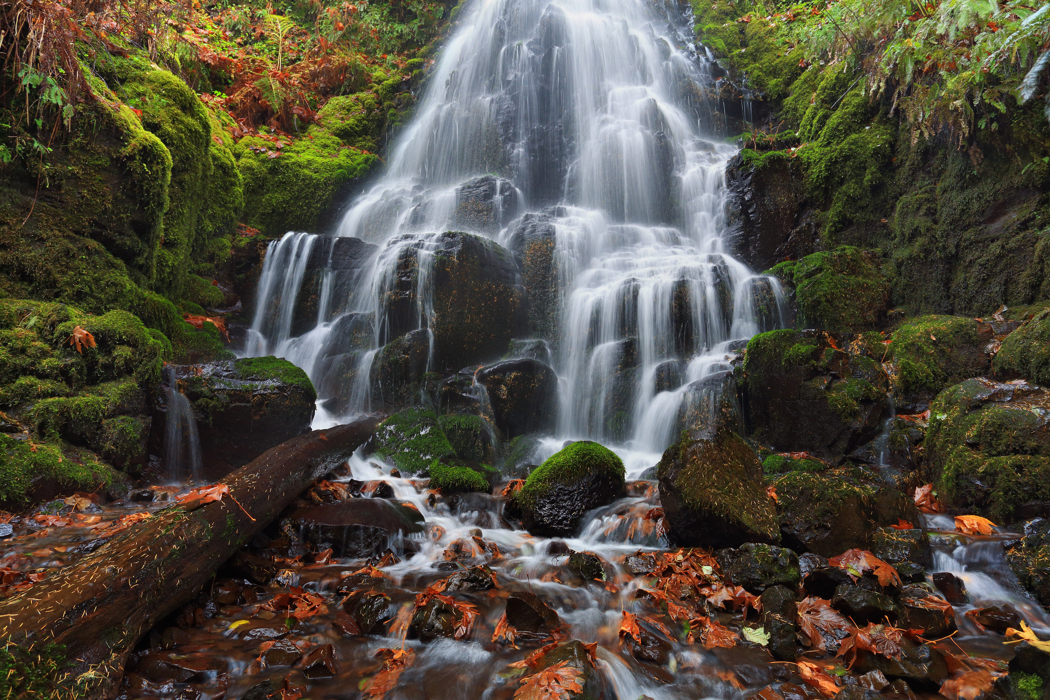 Falling Leaves Live Wallpaper Columbia River Oregon Waterfall Cascade Rocks Moss Leaves