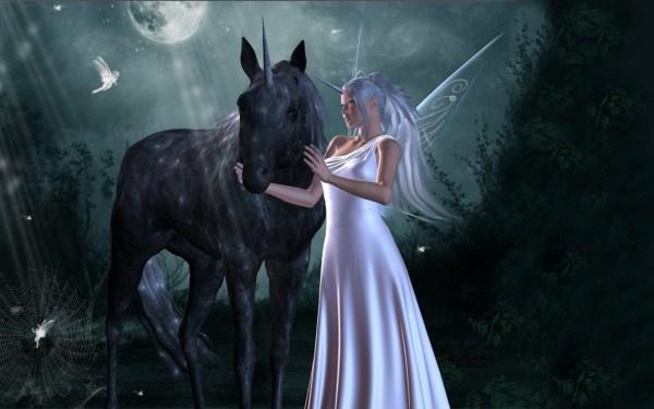 Magical Unicorns and Fairies
