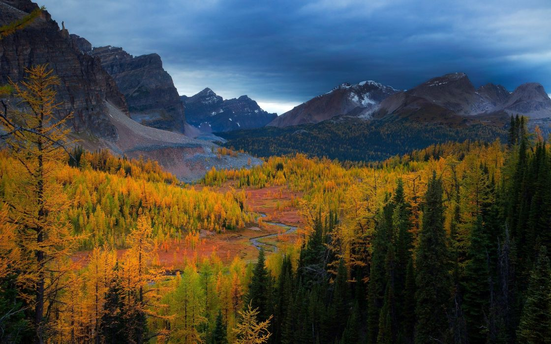 Fall Leaves Wallpaper Windows 7 Mountains Trees Forests Valleys Canada British Columbia