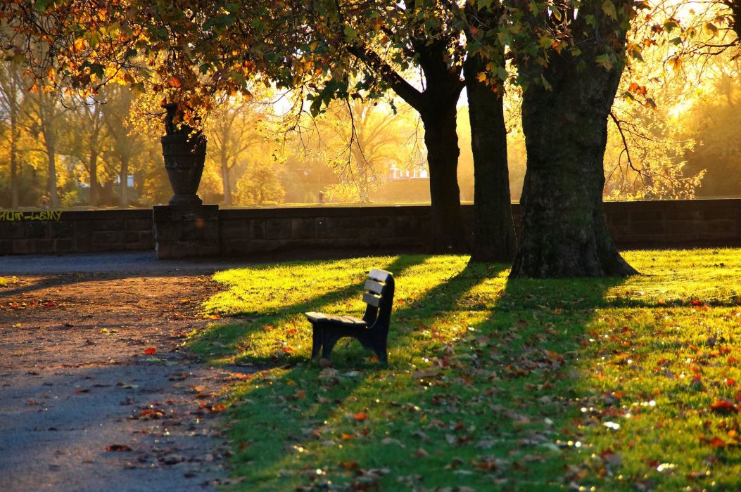 Lonely Wallpaper For Girl Park Bench Autumn Evening Wallpaper 2048x1361 430434
