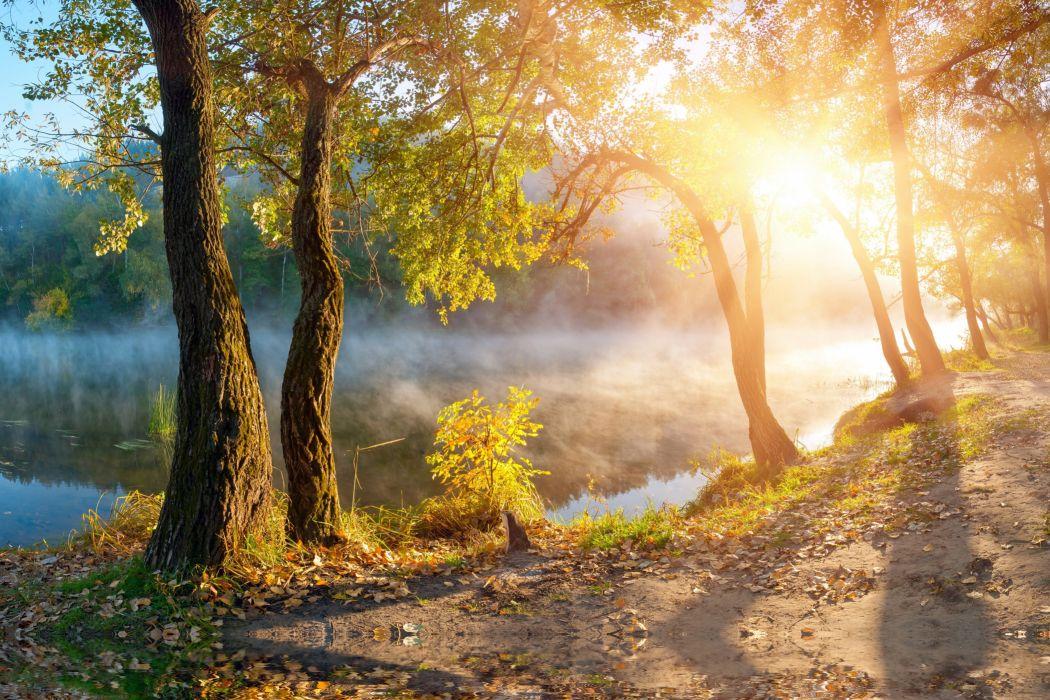 Free Wallpaper Downloads For Fall Leaves Landscape Beautiful Nature Sunbeams Sunlight Autumn