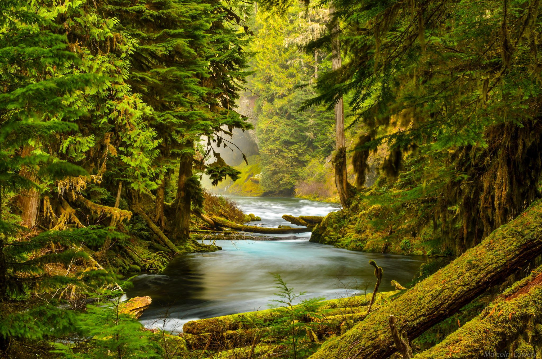 Multnomah Falls Oregon Winter Wallpaper Mckenzie River Oregon Forest River Nature Trees Stones