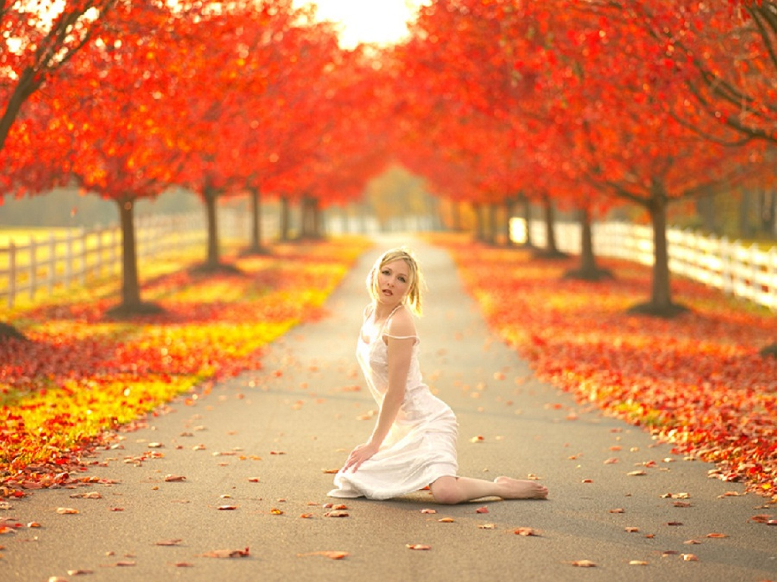 Facebook Wallpaper Fall Colors Wooden Fence Park Pathway Nature Model Trees Women White