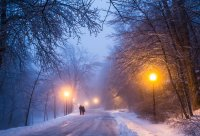 Winter night road mood lamp post wallpaper