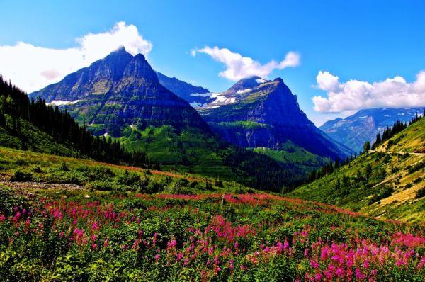 spring mountains landscapes sky