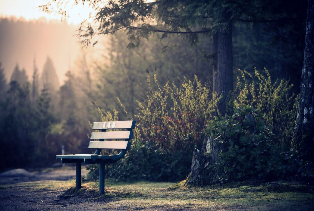 3d Girl Wallpaper Download Skamya Park Trees Gardens Chairs Quiet Relax Alone Nature