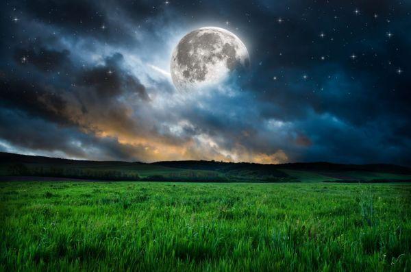 moon grass mood night stars fantasy