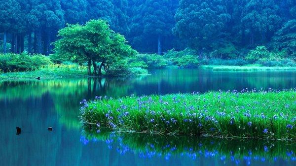 lake nature water landscape reflection