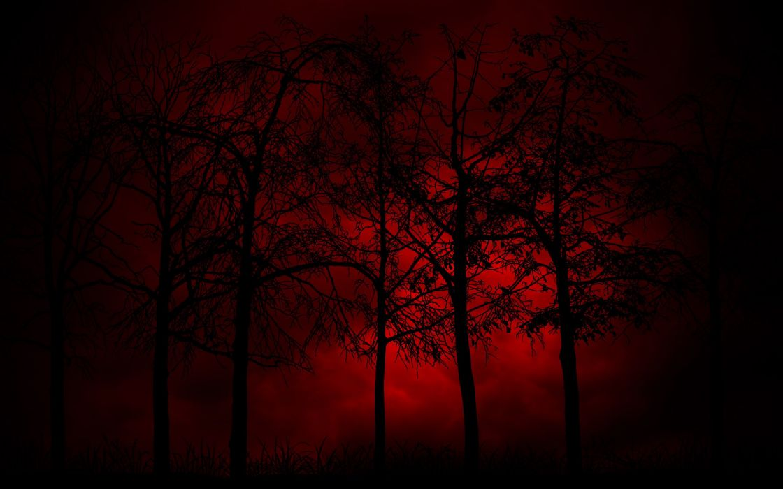 3d 4k Wallpaper Sunrise Swamp Red Blue Tree Red And Black Burning Wallpaper 2560x1600 1068982