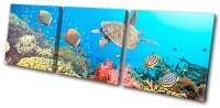Animals Sea Turtle Fish Treble Canvas Wall Art Picture ...
