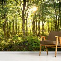 Enchanted Woodland Wallpaper Mural | Wallsauce Europe