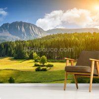 Beautiful Alpine Scenery Wallpaper Mural | Wallsauce Canada