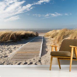 windswept beach boardwalk