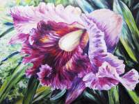 Abstract Pink And Purple Orchid - Oil Painting Wall Mural ...