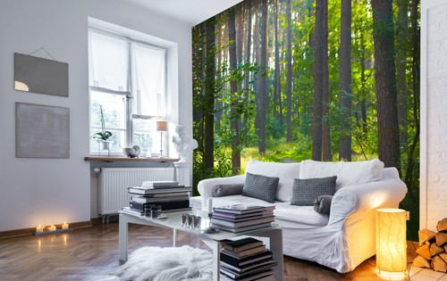 wall mural ideas for living room swivel chairs the top 10 murals rooms wallsauce uk sophisticated natural bookcase are a simple way to establish theme in your