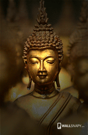 Lord Buddha Hd Photos Buddha Wallpaper For Android Wallsnapy