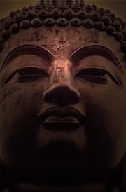 Saibaba Latest Hd Wallpapers Lord Buddha Hd Photos Buddha Wallpaper For Android
