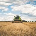Tax Gain Harvesting