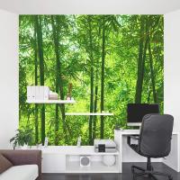 Bamboo Wall Mural | Forest Wallpaper Mural | Wallums