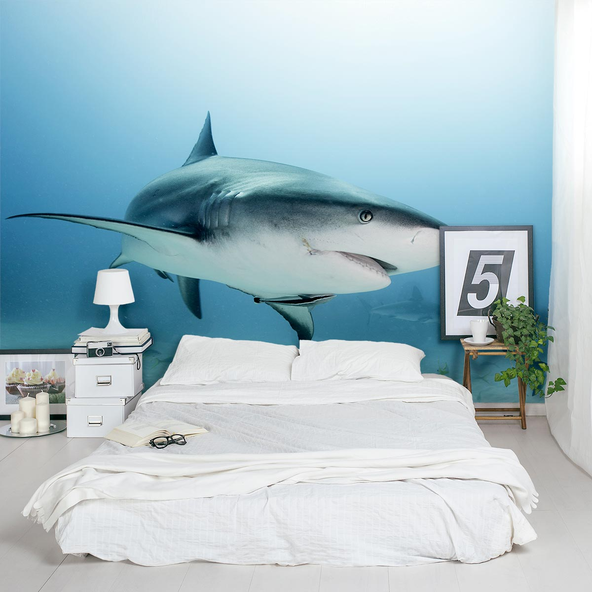 chalkboard for kitchen wall how to make an outdoor caribbean reef shark mural | sticker wallums