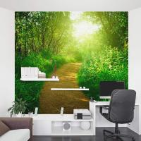 Nature's Path Wall Mural