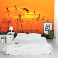 Sunset Wall Mural | Peel and Stick Wall Covering | Wallums