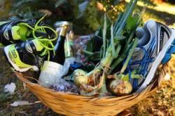 A basket of free stuff. Photo by Liesl Clark.