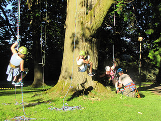 Tree ambassadors get to do cool things like this at their annual picnic.