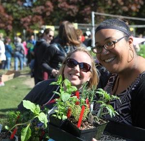 Shoppers at Seattle Tilth's edible plant sale