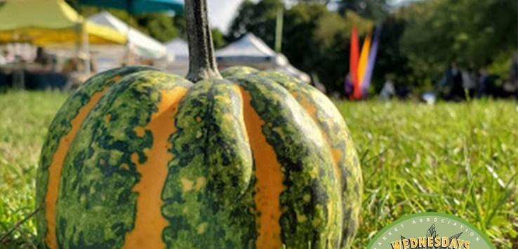 Wallingford Farmers Market opens June 9