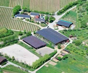WALTER-konzept-WALTER-solar-Schmid