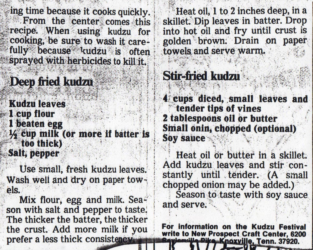 Kudzu Recipes including Deep Fried and Stir Fried