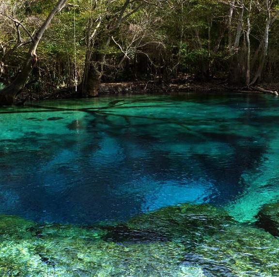 Cold Water Creek Florida