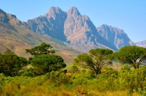 View from Jonkershoek Nature Reserve near Stellenbosch.