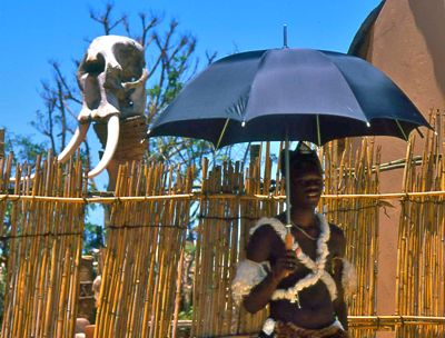 Zulu man with umbrella, South Africa